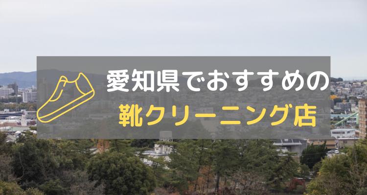 愛知県靴クリーニング