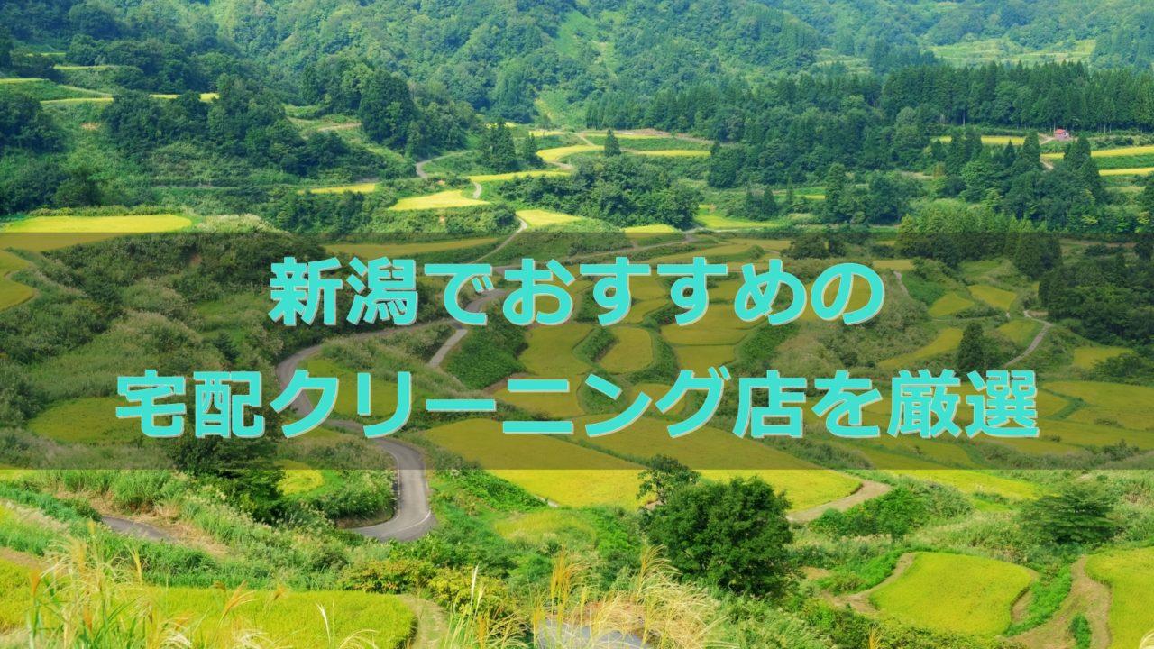新潟県でおすすめの宅配クリーニング店