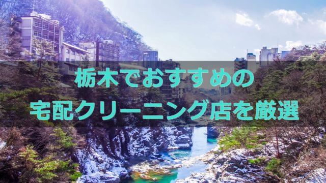 栃木県でおすすめの宅配クリーニング店