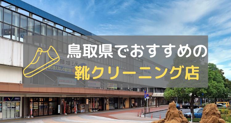 鳥取県靴クリーニング